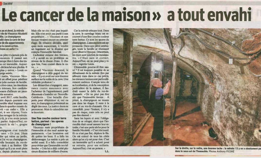 Aubriat dans la presse : Mérule à Metz
